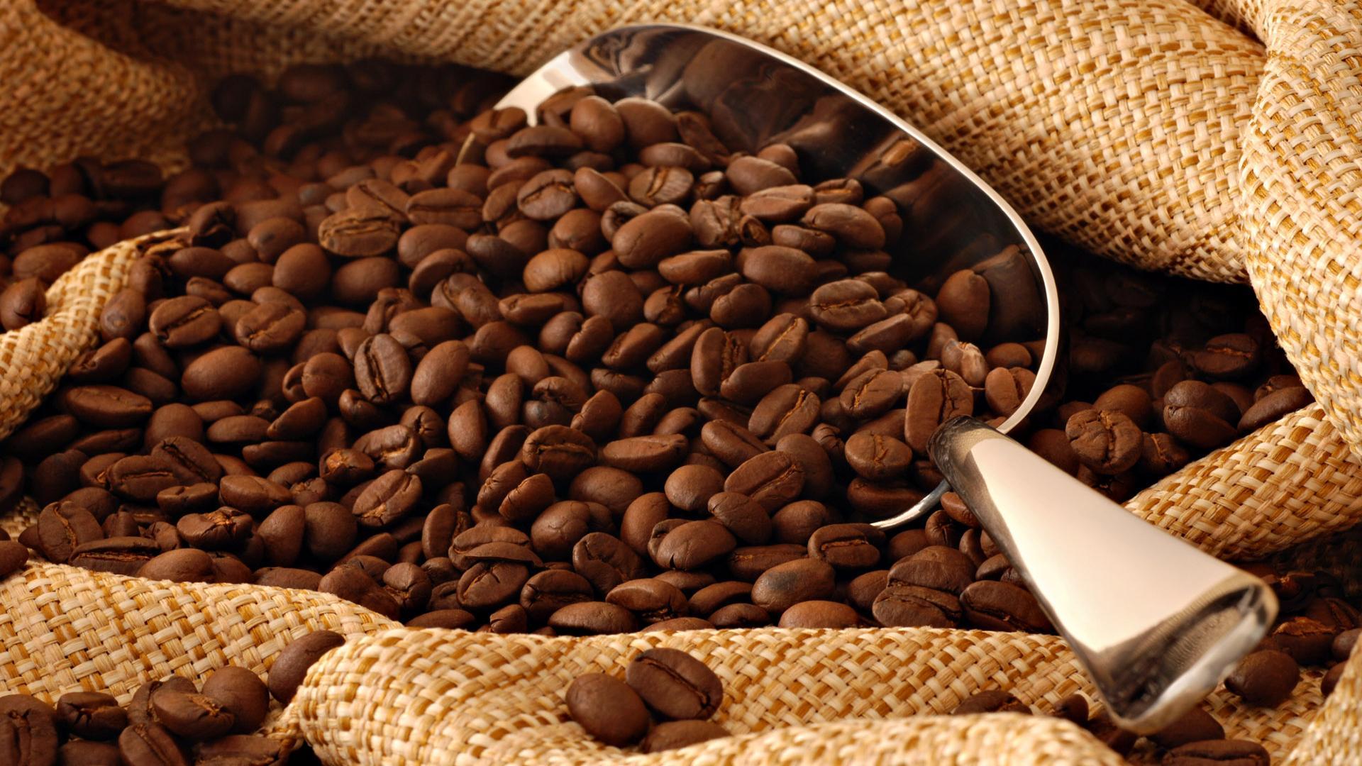 kaffeebohne-478751920x1080478751.jpg